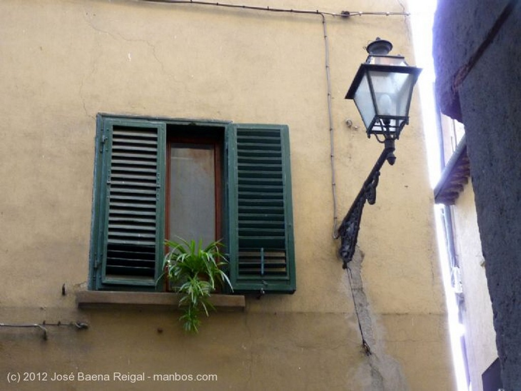 Volterra Terracotas Pisa