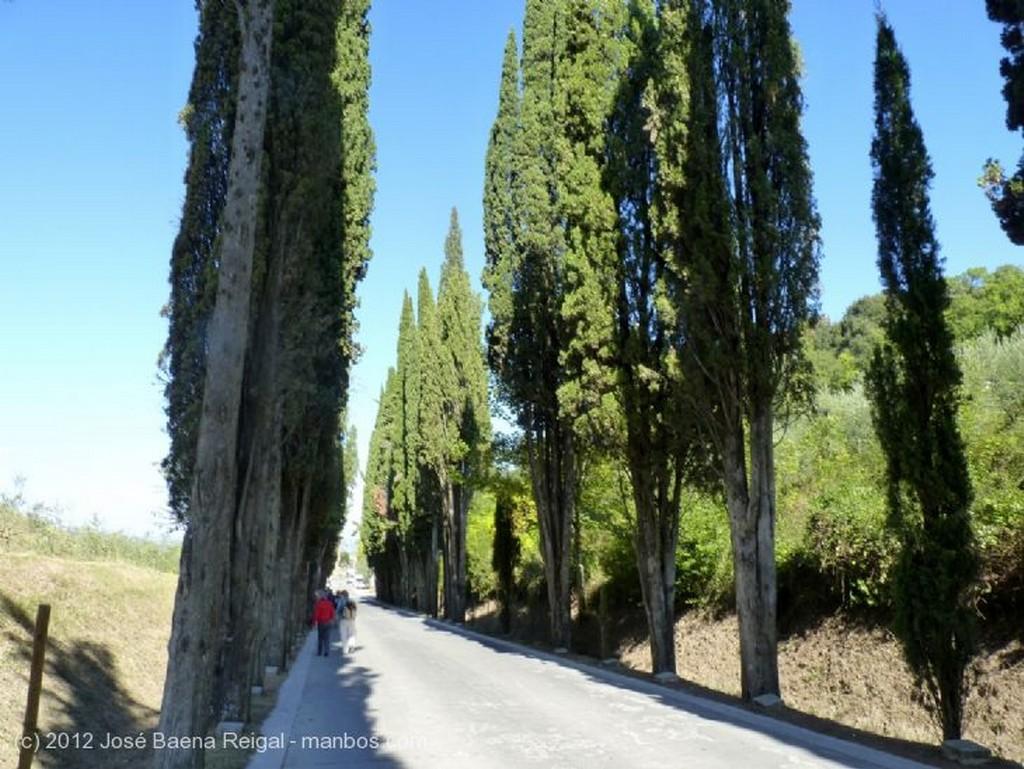 Montepulciano Arte y naturaleza Siena