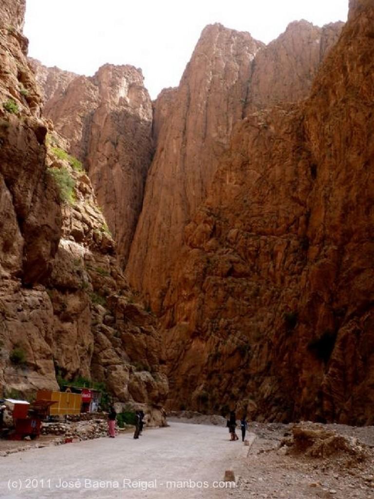 Gargantas del Todra Palmeras, olivos y frutales  Ouarzazate