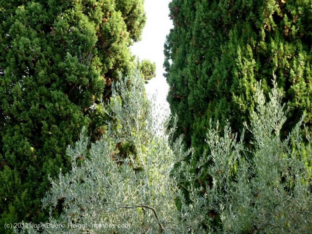 San Gimignano Barriada periferica Siena