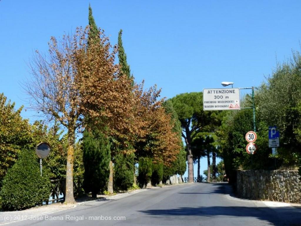 Montepulciano Celajes Siena