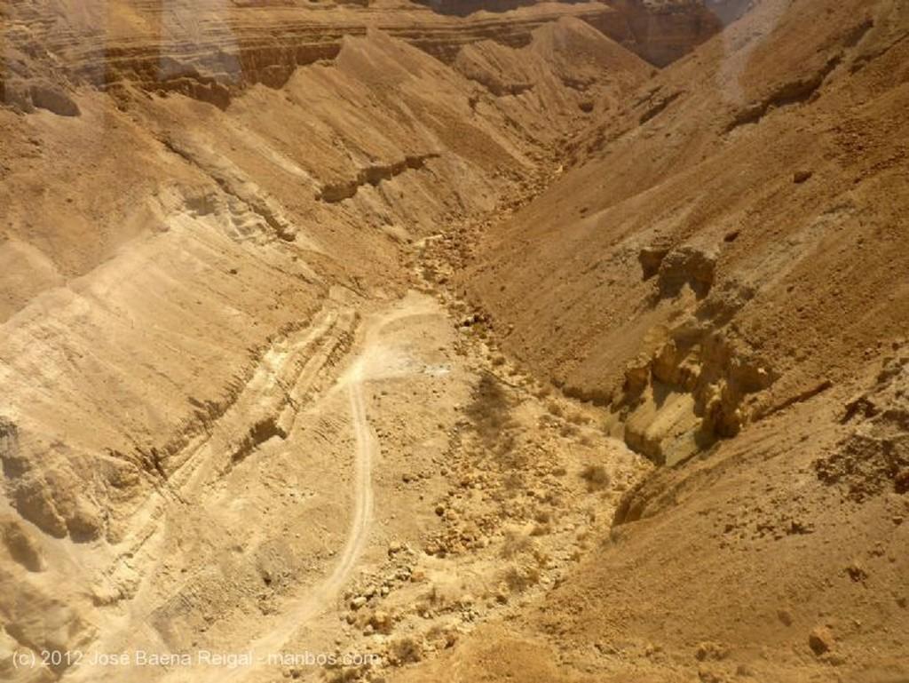 Masada Con la Torah a cuestas   Distrito Meridional