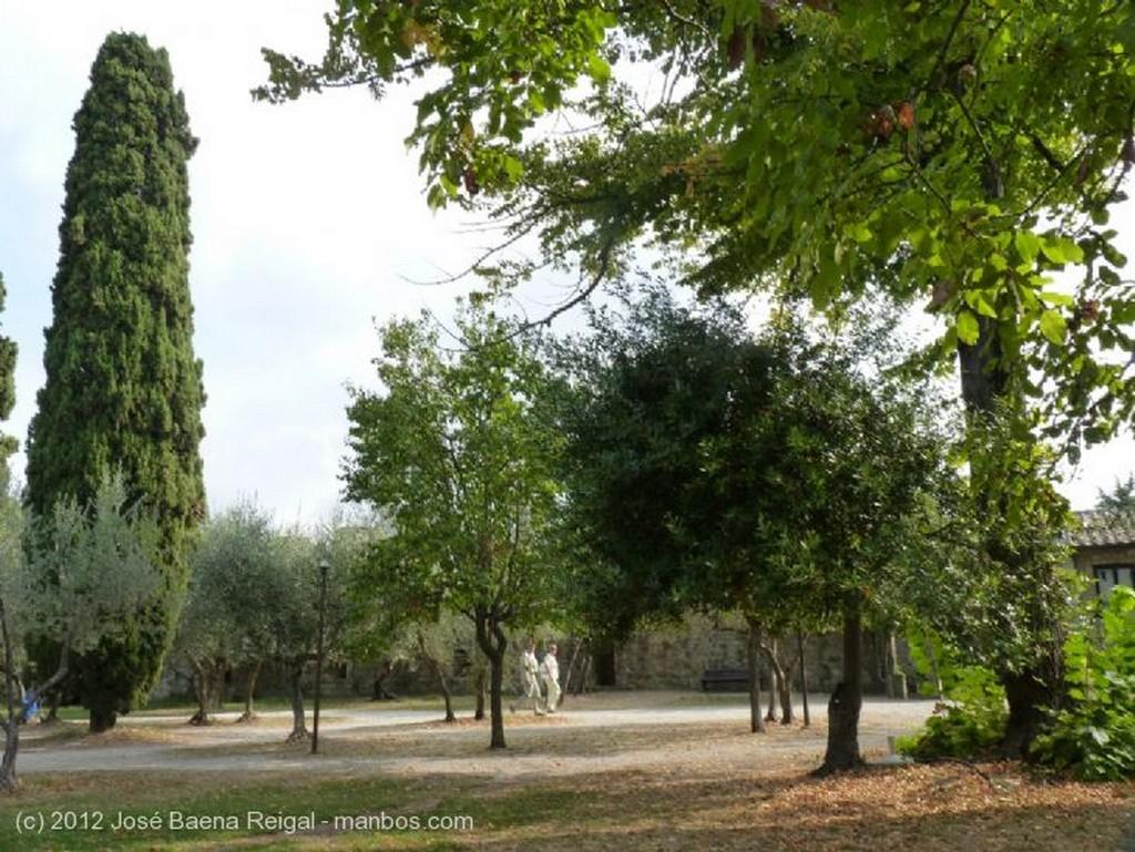 San Gimignano Dos tonos de verde Siena