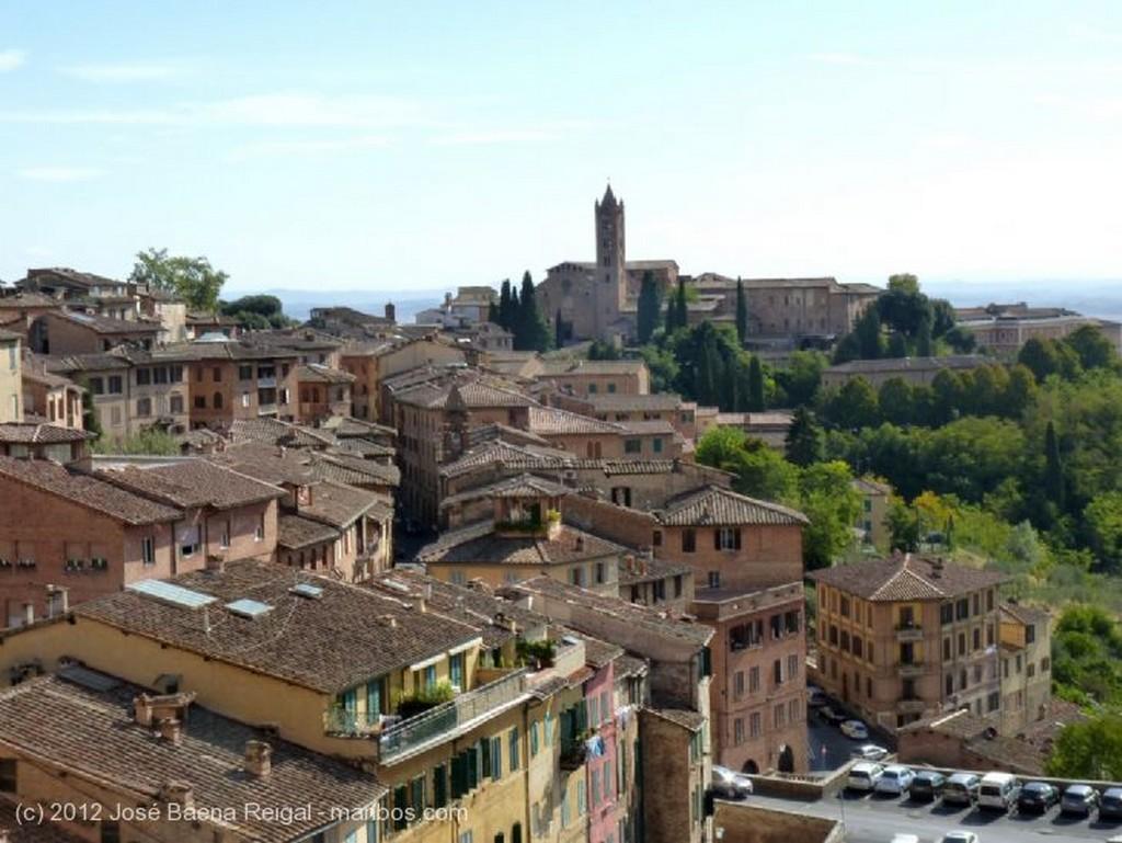 Siena Artesonado Toscana