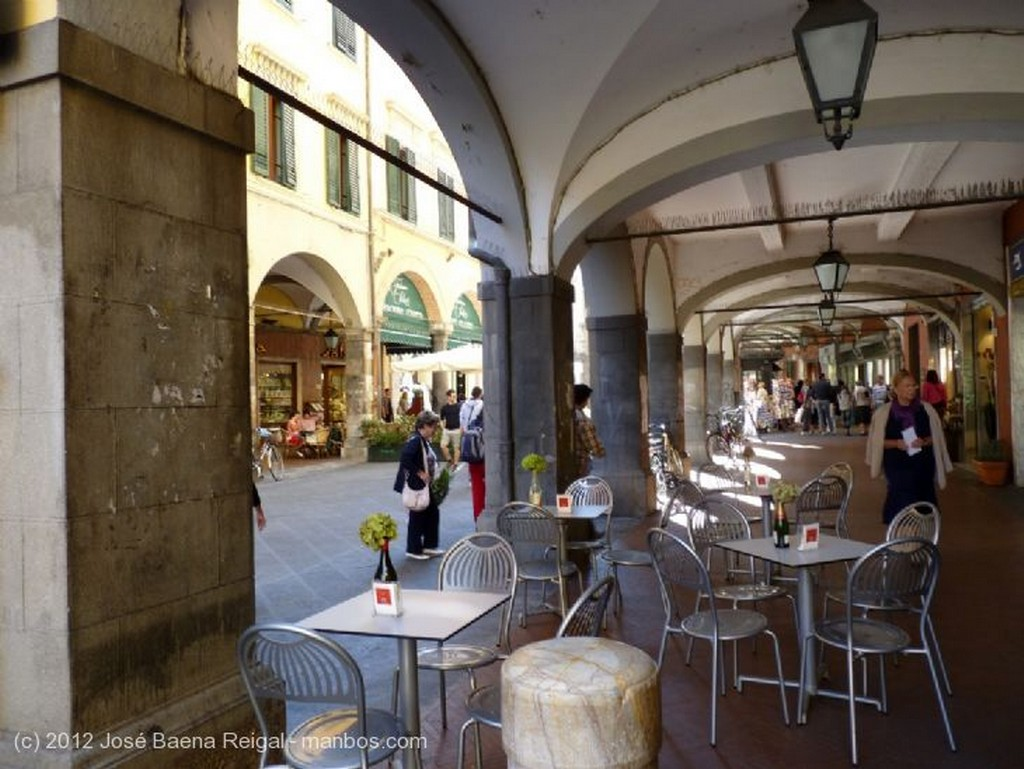 Pisa Mirando al Arno Toscana