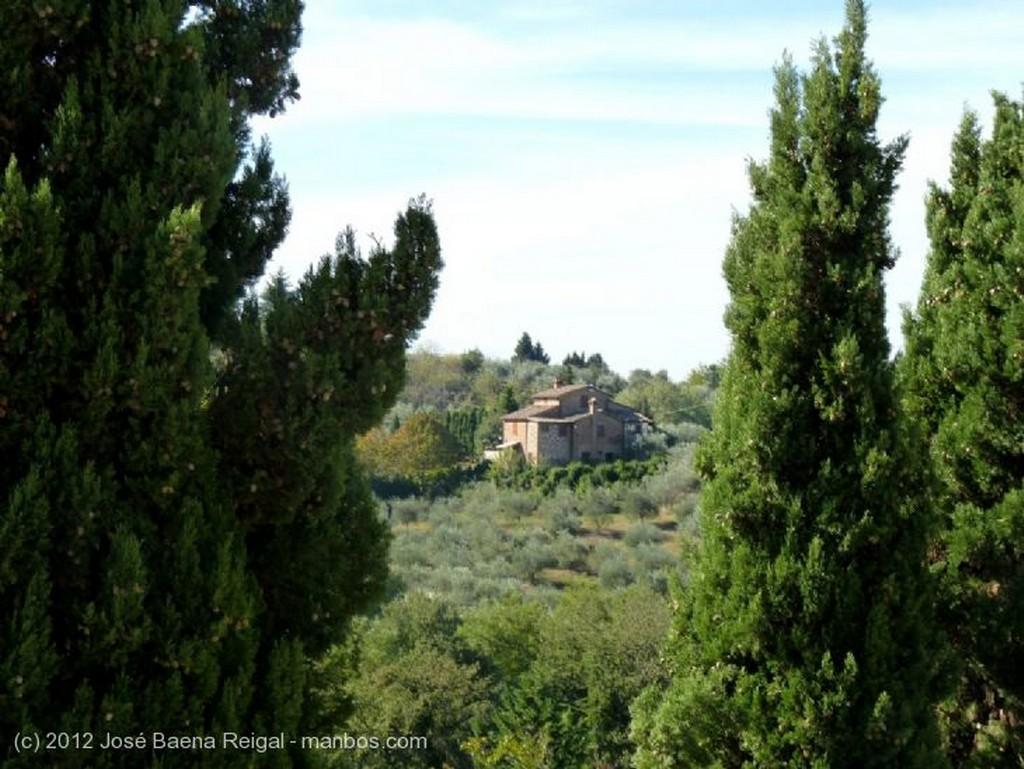 Montepulciano Muro vegetal Siena