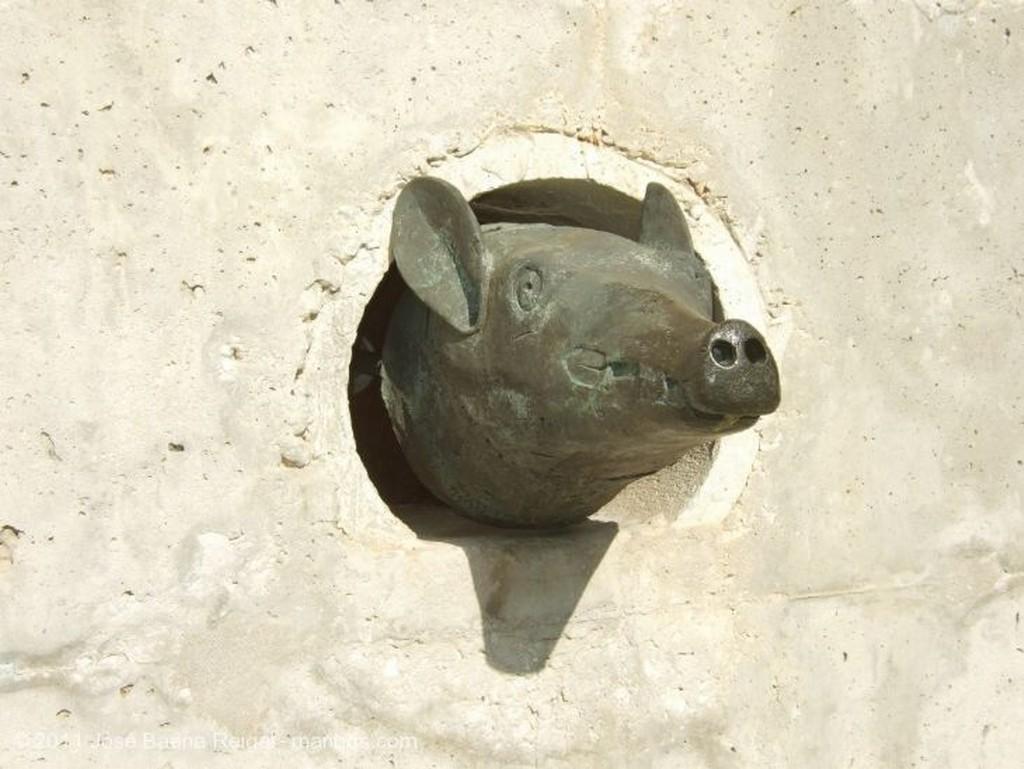 Malaga Estanque Malaga