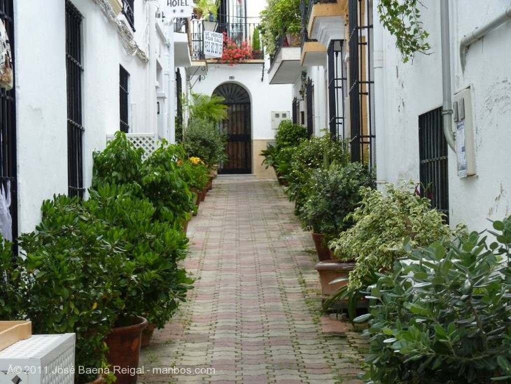Marbella Turistas Malaga