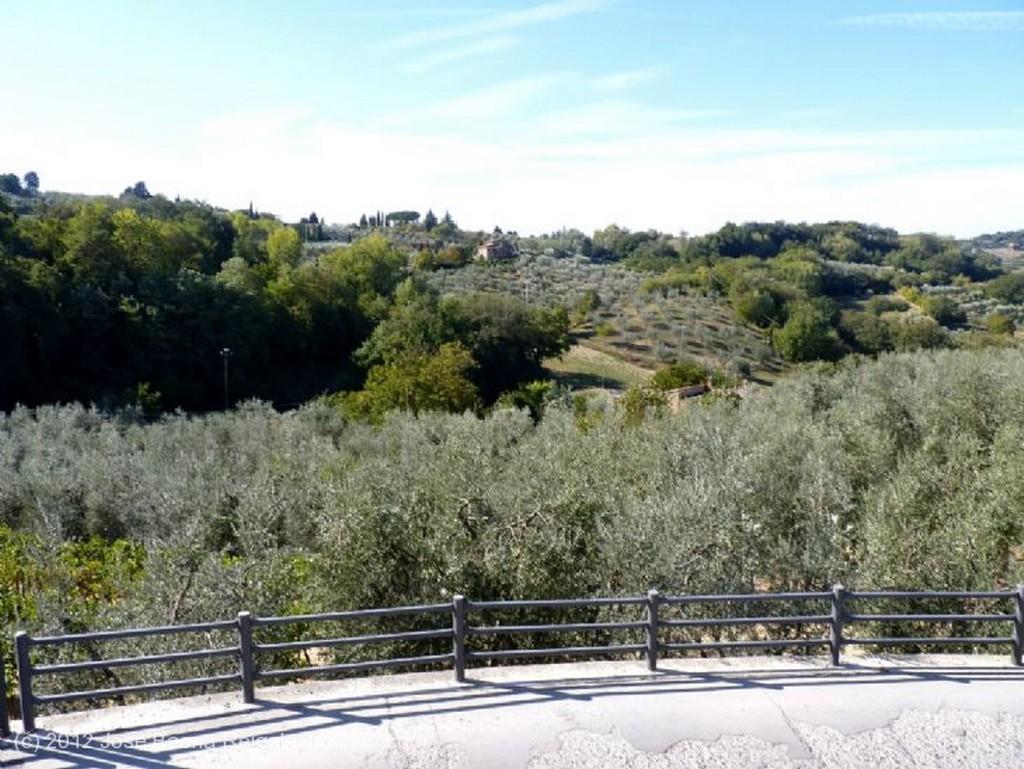 Montepulciano Muro y cipreses Siena