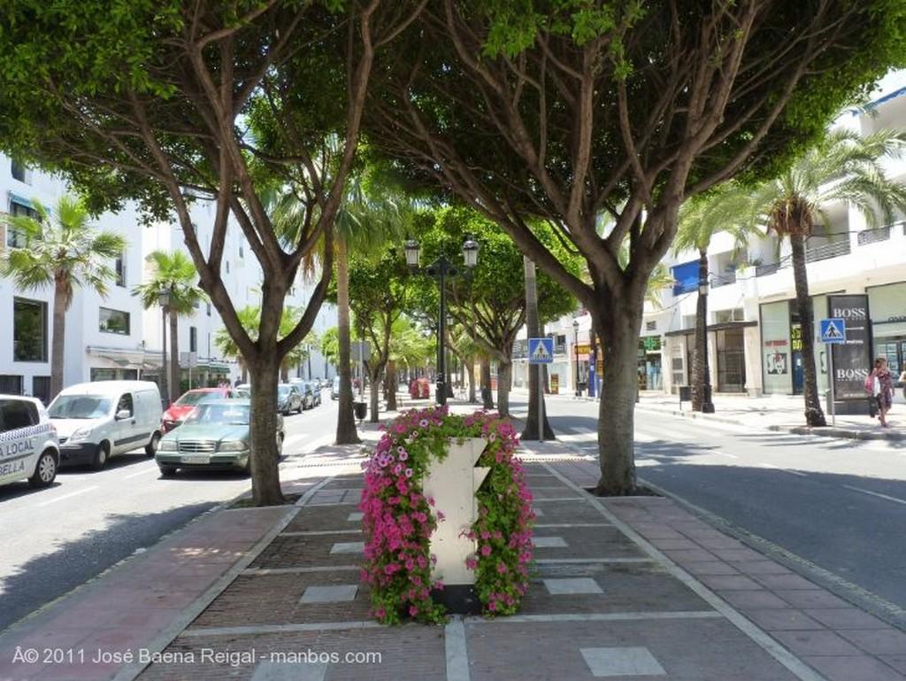 Marbella Estampa tropical Malaga