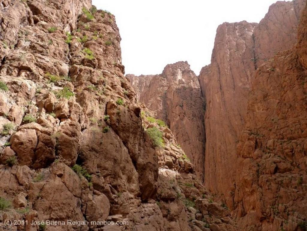 Gargantas del Todra Un lugar imponente Ouarzazate