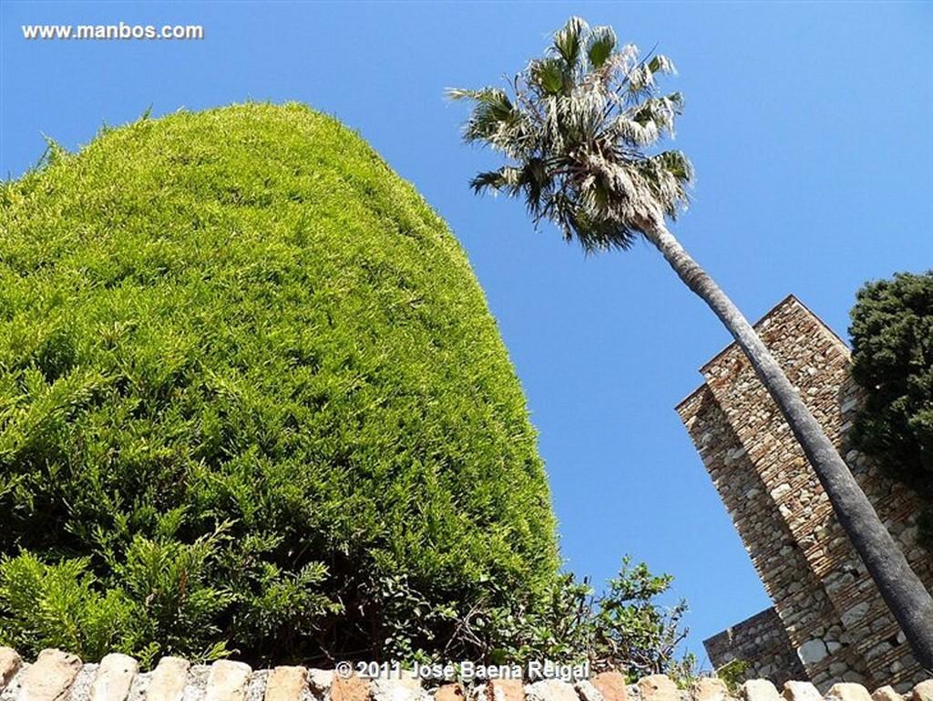 Malaga Fuente de la Ballena  Malaga