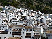 Foto de Mijas, Jardines del Muro, España - Trepando por las laderas