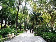 Foto de Malaga, Parque Central, España - Paseo de los Curas