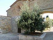 Iglesia de San Jacopo al Tempio  , San Gimignano, Italia