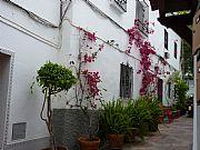 Calle San Diego, Marbella, España