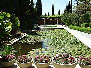 Jardin Botanico La Concepcion , Malaga, España