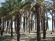 Playa del Bajondillo, Torremolinos, España
