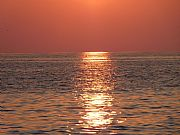 Foto de Marbella, Playa de Elviria, España - Rojo atardecer