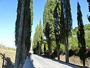Viale della Remenbranza, Montepulciano, Italia