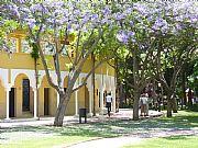 Parque de la Constitucion, Marbella, España
