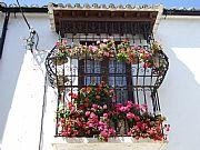 Camera Fuji Fine Pix Ventana del paraíso José Baena Reigal Gallery RONDA Photo: 17414