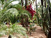 Jardin Majorelle, Marrakech, Marruecos