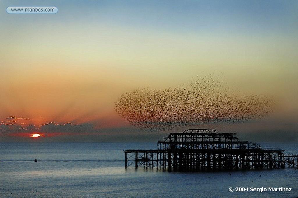 Brighton Panoramica del Brighton pier East Sussex