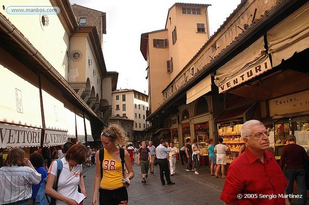 Florencia jabali primer plano Florencia