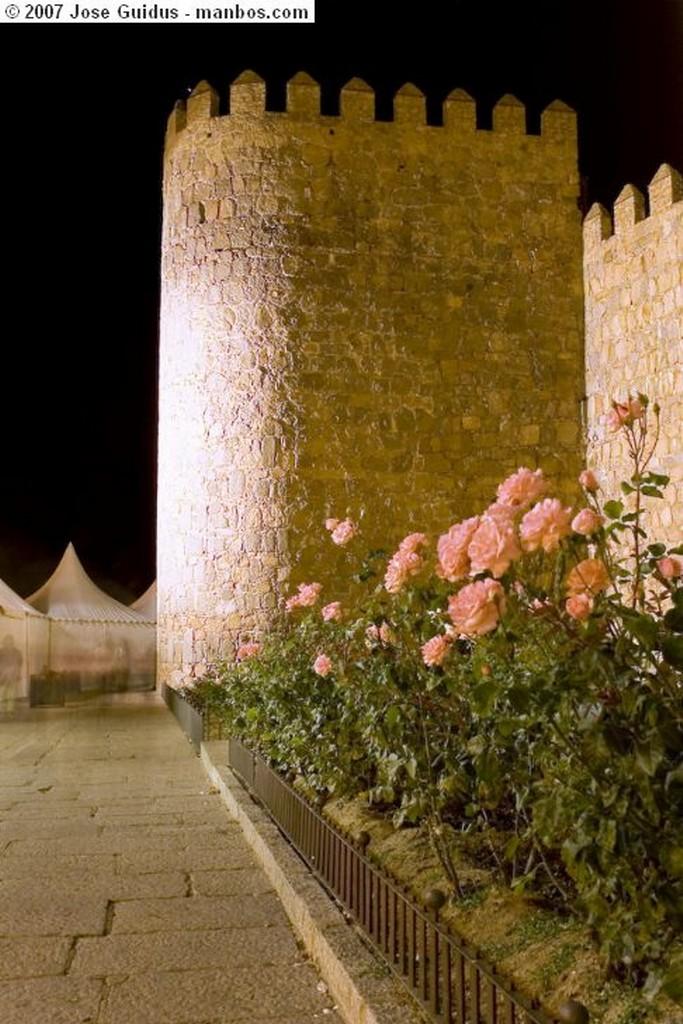 Avila Muralla nocturna Avila